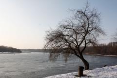 U soutoku Moravy a Dunaje