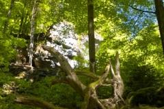 Příroda v okolí Pottensteinu