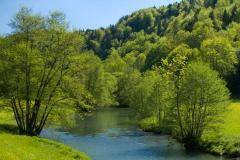 Řeka Wiesent