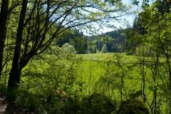 Údolí řeky Aufseß