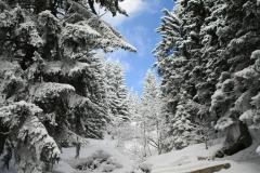 Stále tu je dostatek sněhu