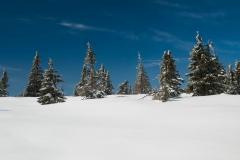 Sníh pomalu ale jistě taje