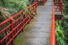 Tropická zahrada v japonském stylu