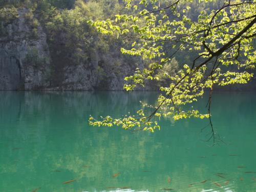 Romantický pohled na jezero