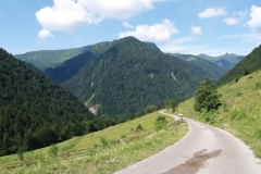 hory4