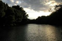 Západ slunce u slepého ramene Dunaje.