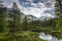 V údolí Viksdalen