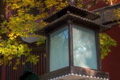 Lampa s podzimním listím