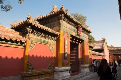 Peking-8