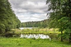 Jezero Gavys u města Ignalina