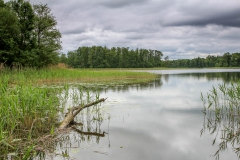 Jezero Müšéjus v regionálním parku Anykščių