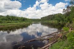 Řeka Gauja v národním parku Gaujas
