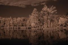 Jezírko v infračerveném světle