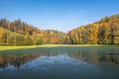 <!--:cs-->Bílý rybník<!--:--><!--:en-->The White Pond<!--:-->
