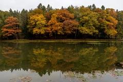 <!--:cs-->Panorama Štičího rybníka<!--:--><!--:en-->Panorama at the Štičí pond<!--:-->