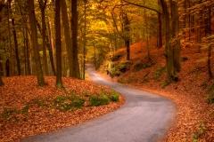 Cesta na Hrubou Skálu