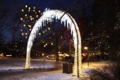 Vánoční ozdoby v parku v blízkosti radnice