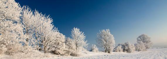 dalov-zima-2010