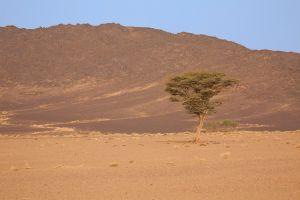 maroko-186.jpg