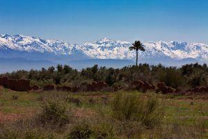 maroko-76.jpg